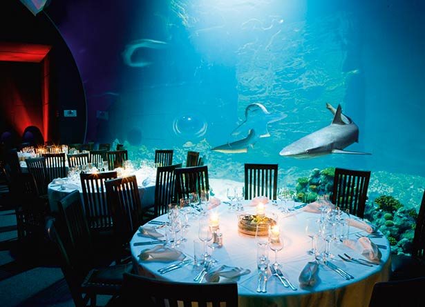02e01-hamburg-events hai-atoll